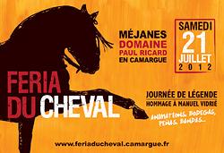 Feria du Cheval de Méjanes